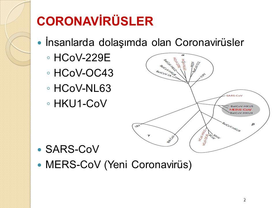 CORONAVİRÜSLER İnsanlarda dolaşımda olan Coronavirüsler HCoV-229E