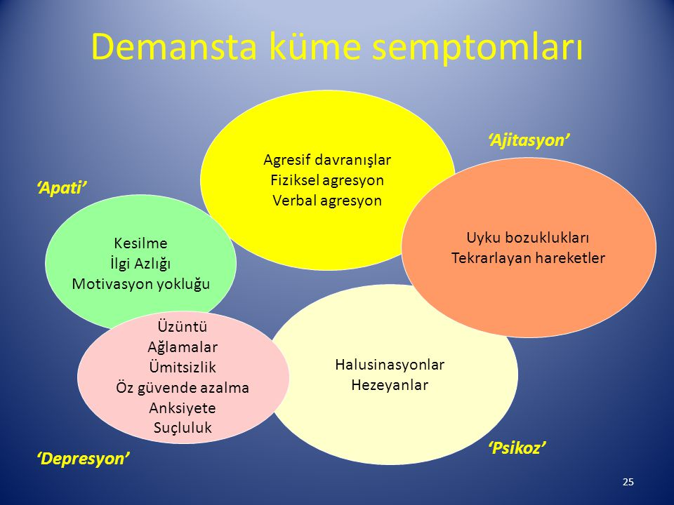 Demansta küme semptomları