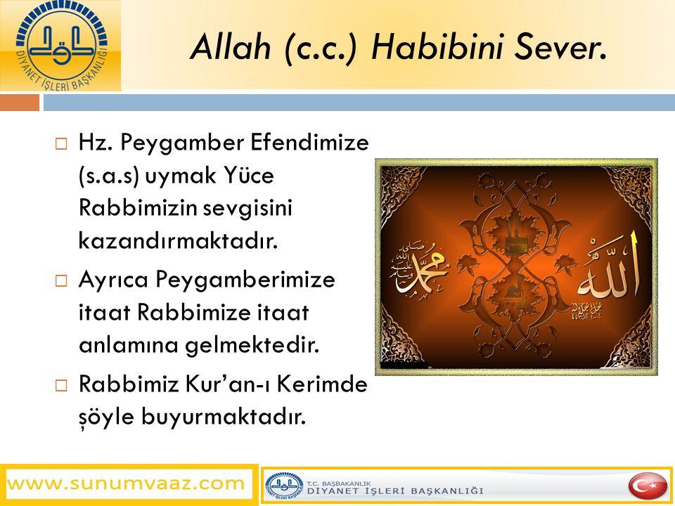 Allah (c.c.) Habibini Sever.