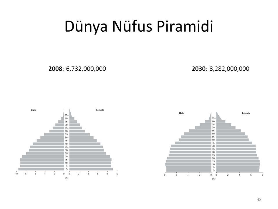 Dünya Nüfus Piramidi 2008: 6,732,000,000 2030: 8,282,000,000