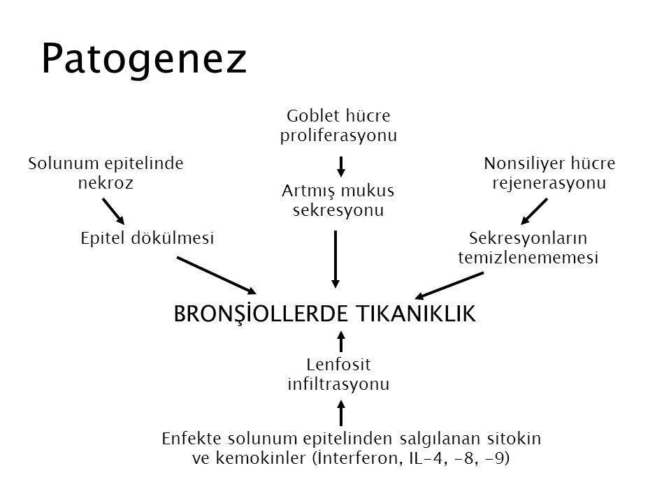 Patogenez BRONŞİOLLERDE TIKANIKLIK Goblet hücre proliferasyonu