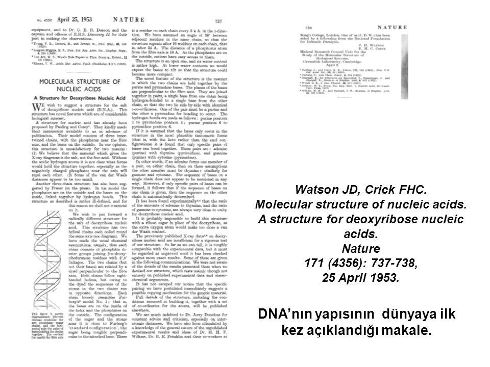 DNA'nın yapısının dünyaya ilk kez açıklandığı makale.