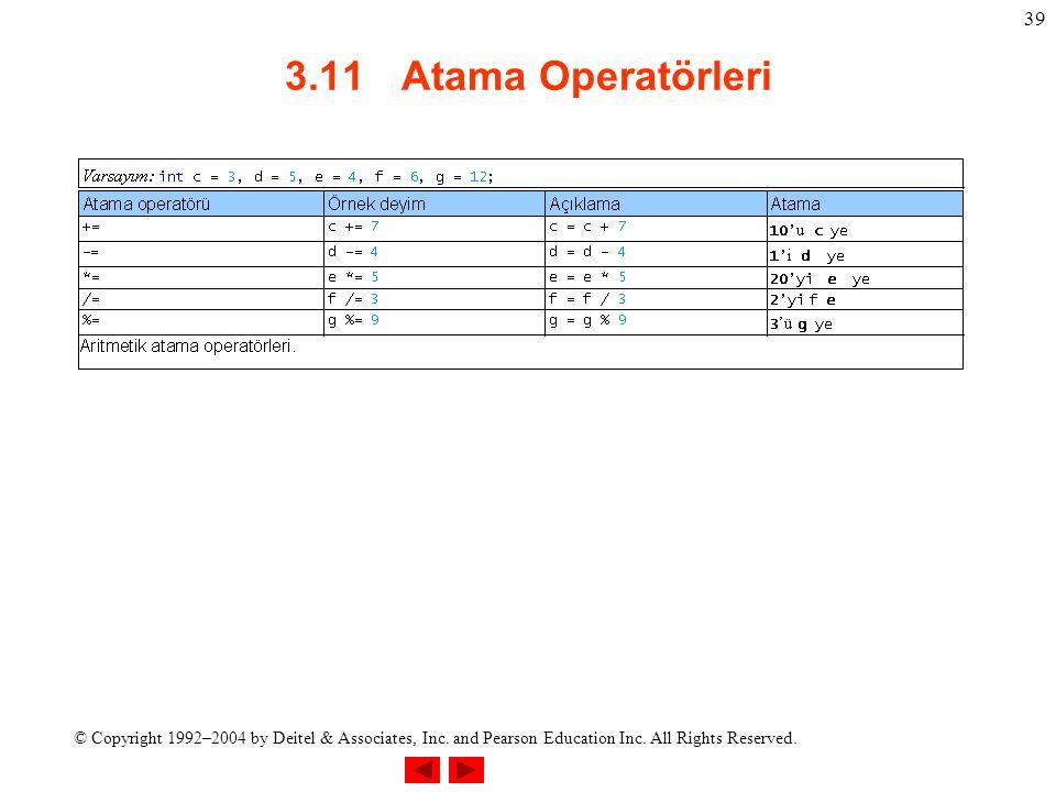 3.11 Atama Operatörleri