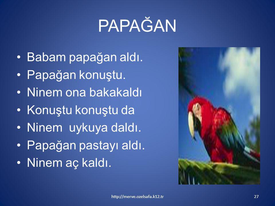 PAPAĞAN Babam papağan aldı. Papağan konuştu. Ninem ona bakakaldı
