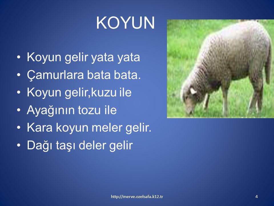 KOYUN Koyun gelir yata yata Çamurlara bata bata. Koyun gelir,kuzu ile