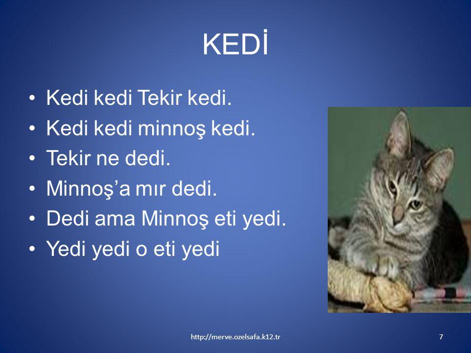 KEDİ Kedi kedi Tekir kedi. Kedi kedi minnoş kedi. Tekir ne dedi.