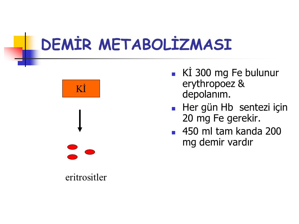DEMİR METABOLİZMASI Kİ 300 mg Fe bulunur erythropoez & depolanım. Kİ