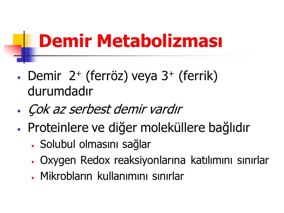 Demir Metabolizması Demir 2+ (ferröz) veya 3+ (ferrik) durumdadır