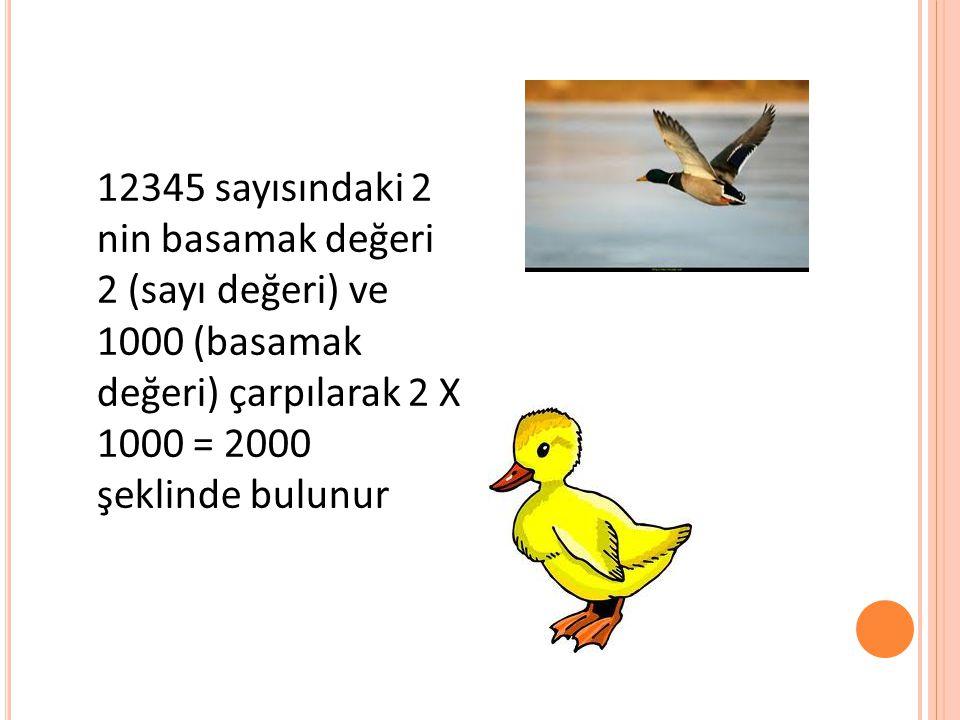 12345 sayısındaki 2 nin basamak değeri 2 (sayı değeri) ve 1000 (basamak değeri) çarpılarak 2 X 1000 = 2000 şeklinde bulunur