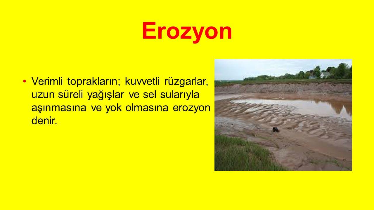 Erozyon Verimli toprakların; kuvvetli rüzgarlar, uzun süreli yağışlar ve sel sularıyla aşınmasına ve yok olmasına erozyon denir.