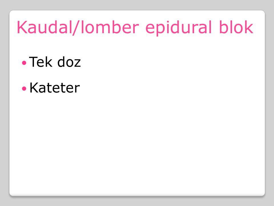 Kaudal/lomber epidural blok