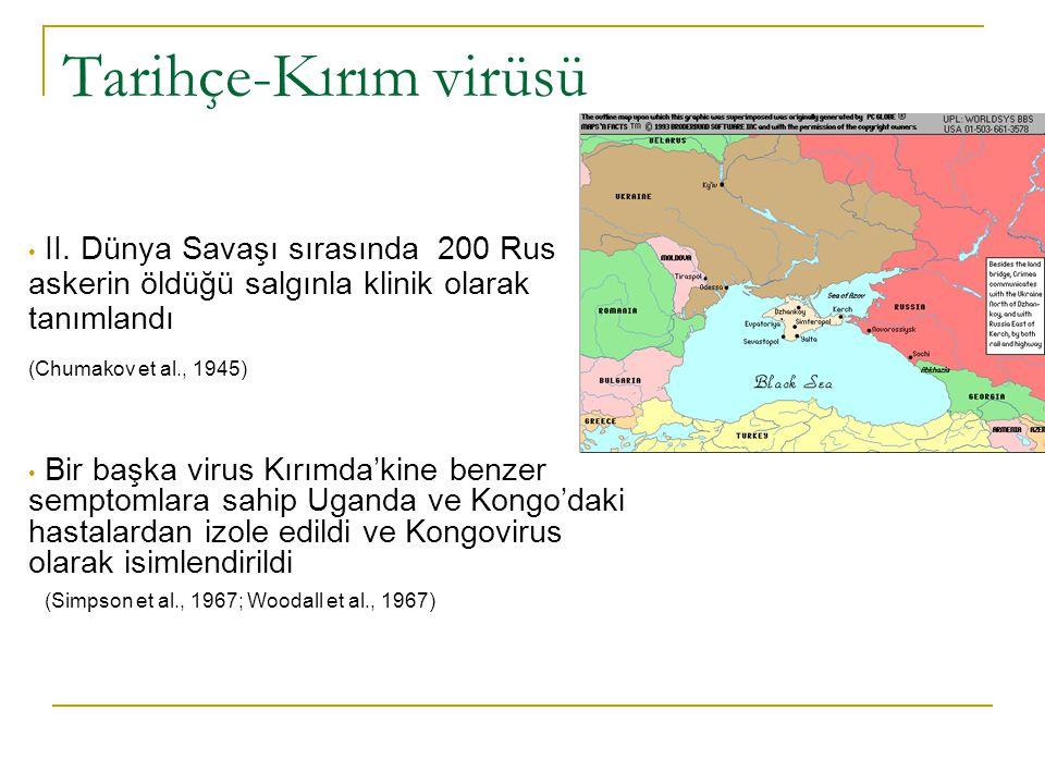 Tarihçe-Kırım virüsü II. Dünya Savaşı sırasında 200 Rus askerin öldüğü salgınla klinik olarak tanımlandı.