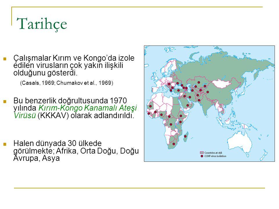 Tarihçe Çalışmalar Kırım ve Kongo'da izole edilen virusların çok yakın ilişkili olduğunu gösterdi. (Casals, 1969; Chumakov et al., 1969)
