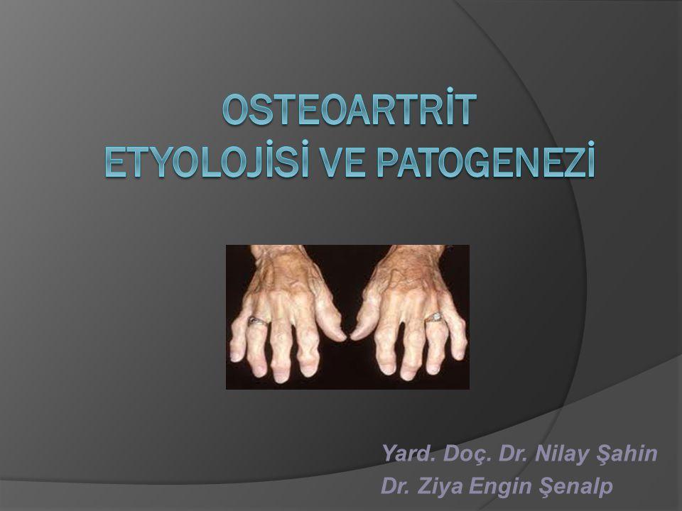 OSTEOARTRİT ETYOLOJİSİ VE PATOGENEZİ