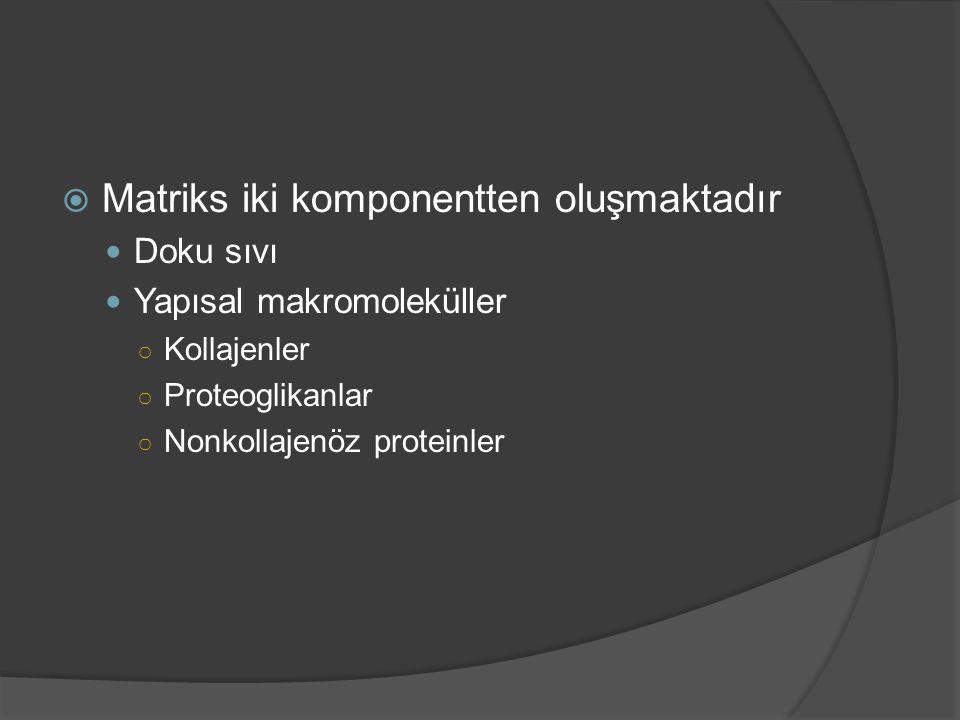 Matriks iki komponentten oluşmaktadır