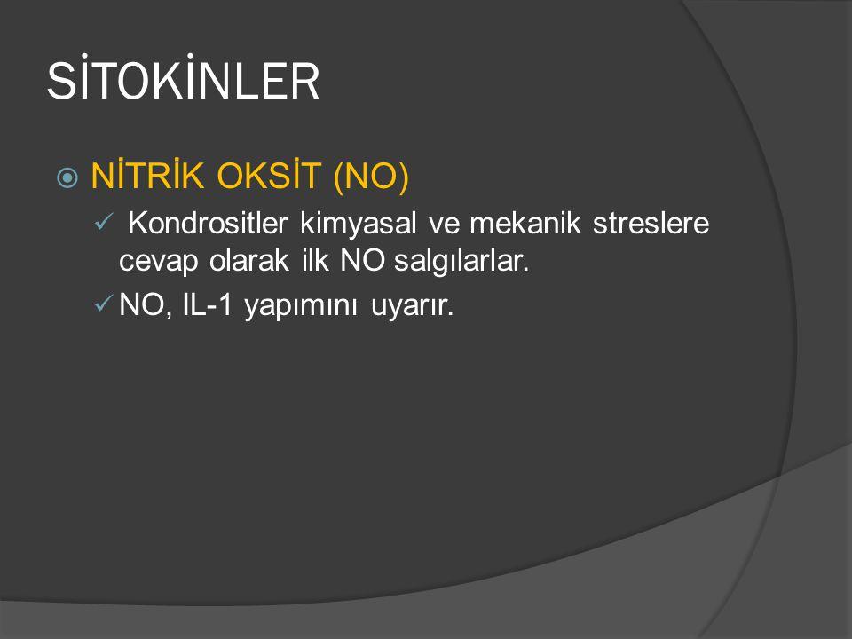 SİTOKİNLER NİTRİK OKSİT (NO)