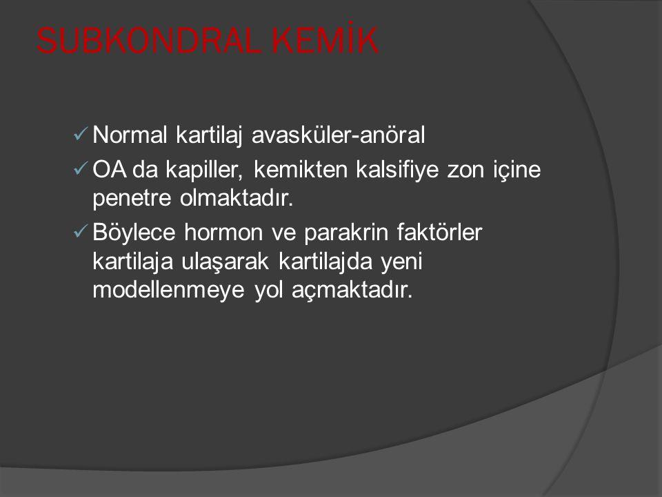 SUBKONDRAL KEMİK Normal kartilaj avasküler-anöral