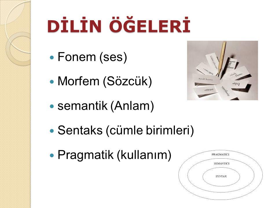 DİLİN ÖĞELERİ Fonem (ses) Morfem (Sözcük) semantik (Anlam)