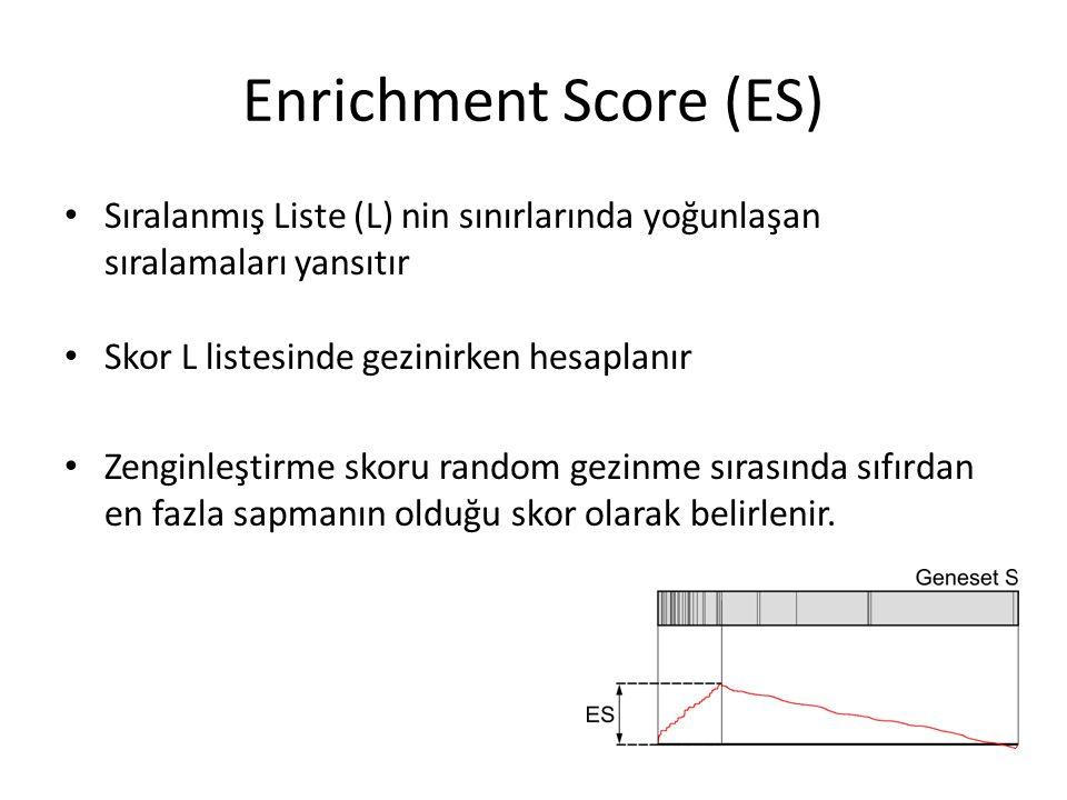 Enrichment Score (ES) Sıralanmış Liste (L) nin sınırlarında yoğunlaşan sıralamaları yansıtır. Skor L listesinde gezinirken hesaplanır.