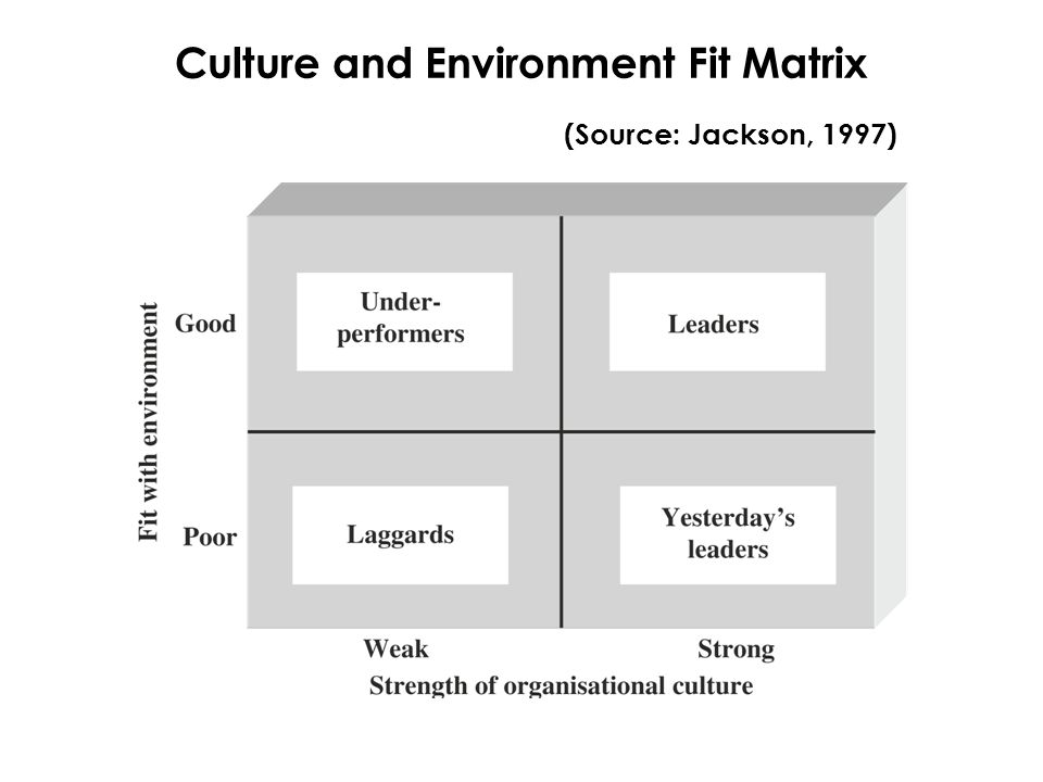 Culture and Environment Fit Matrix (Source: Jackson, 1997)