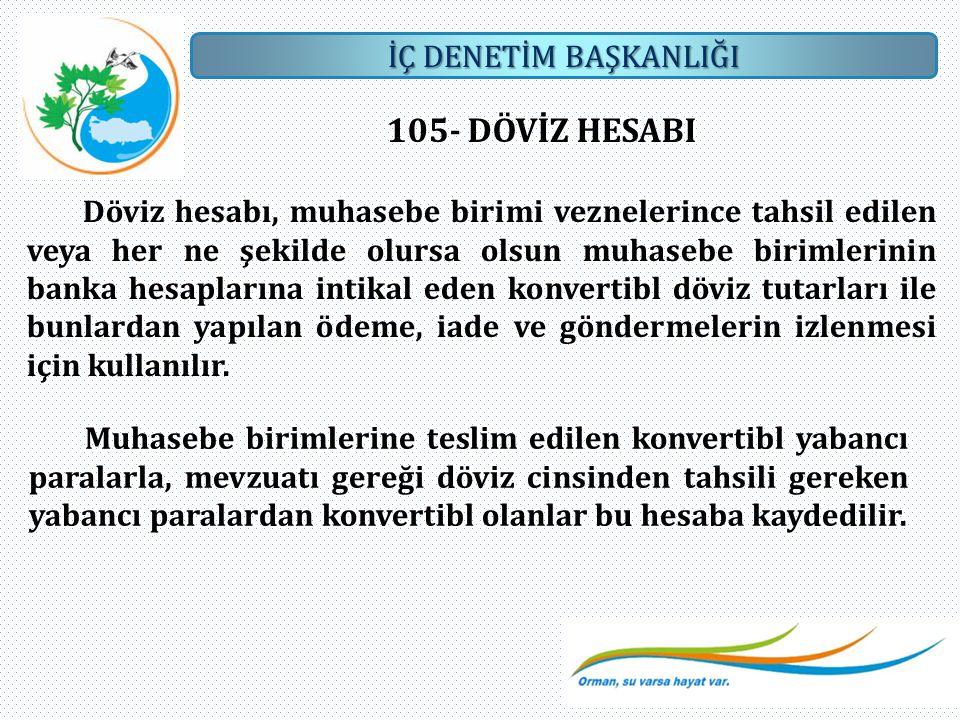 105- DÖVİZ HESABI