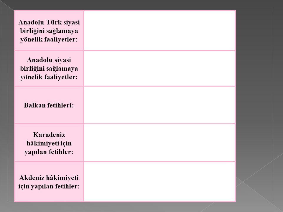 Anadolu Türk siyasi birliğini sağlamaya yönelik faaliyetler:
