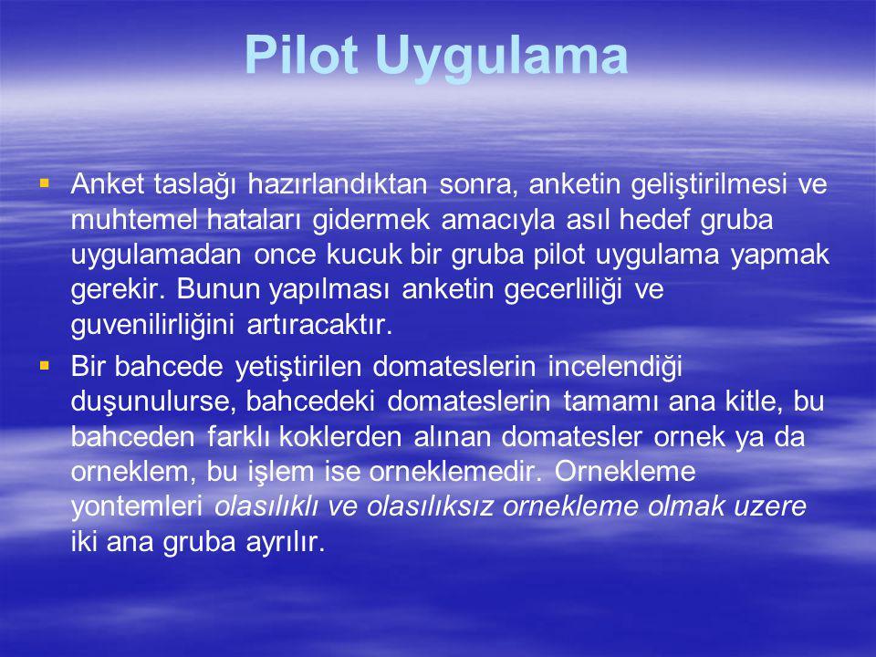 Pilot Uygulama