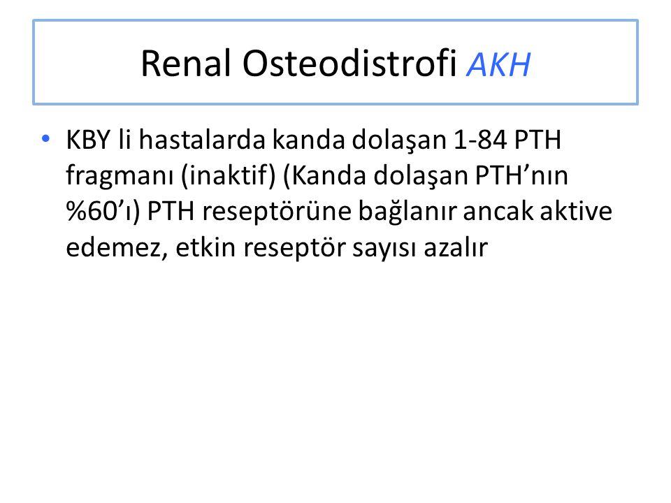 Renal Osteodistrofi AKH