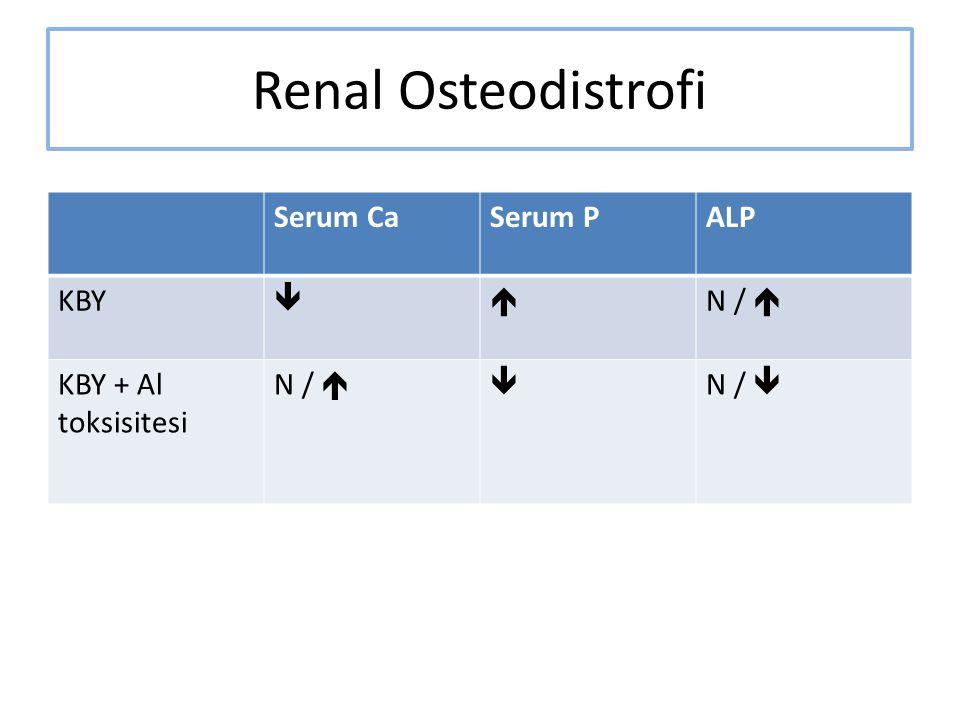 Renal Osteodistrofi Serum Ca Serum P ALP KBY   N / 