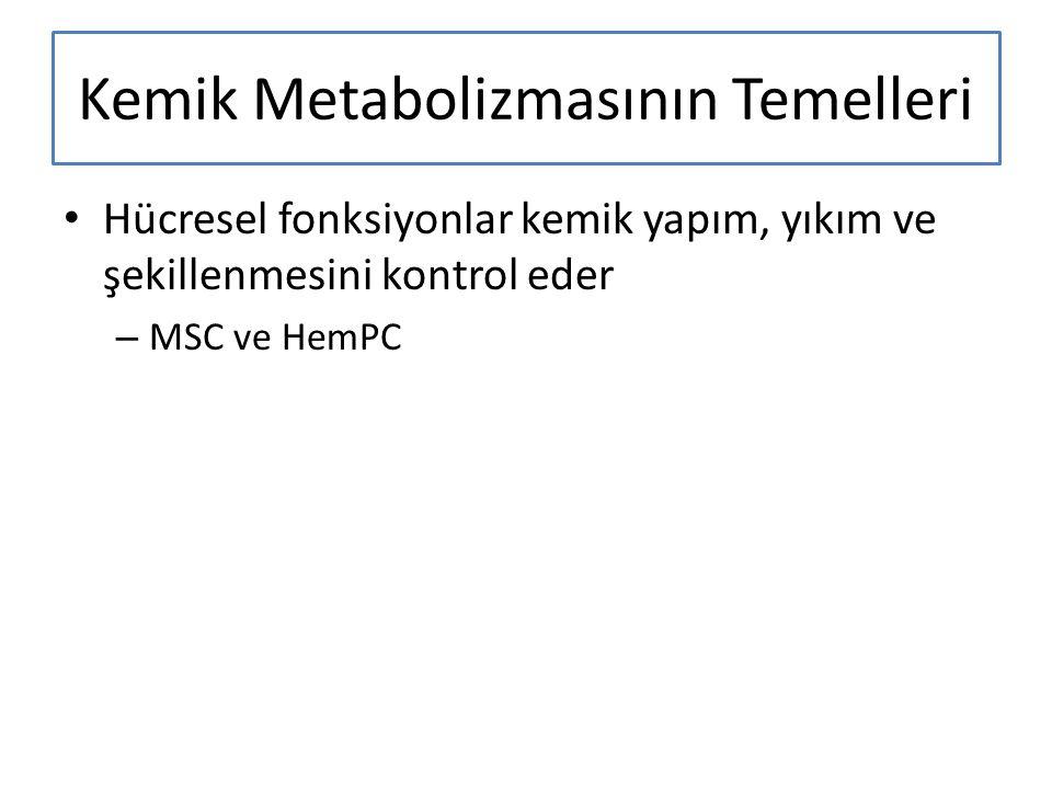 Kemik Metabolizmasının Temelleri