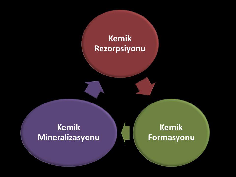 Kemik Mineralizasyonu