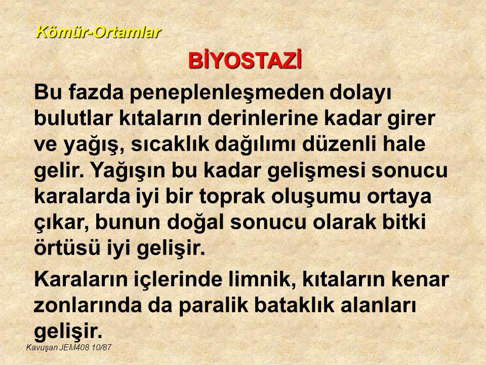 Kömür-Ortamlar BİYOSTAZİ.