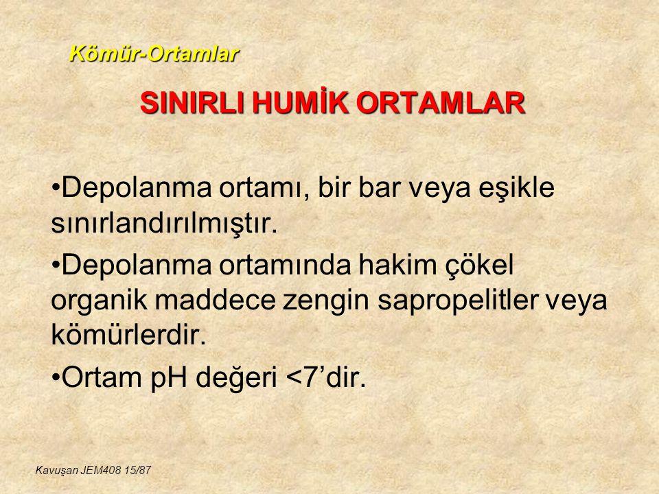 SINIRLI HUMİK ORTAMLAR