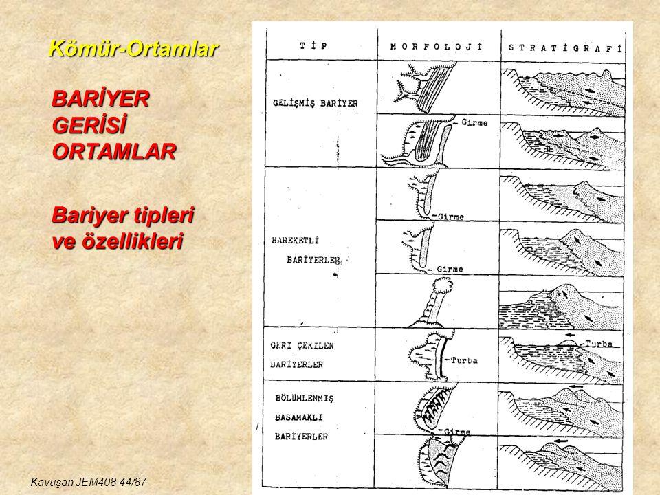 BARİYER GERİSİ ORTAMLAR Bariyer tipleri ve özellikleri