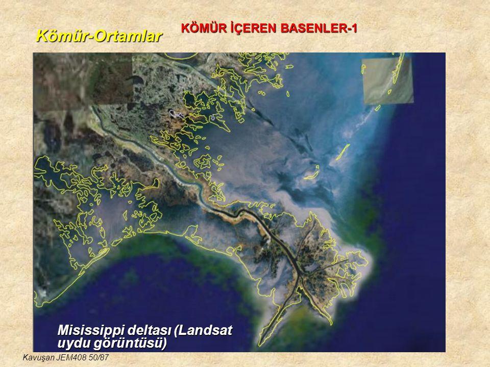 Kömür-Ortamlar Misissippi deltası (Landsat uydu görüntüsü)