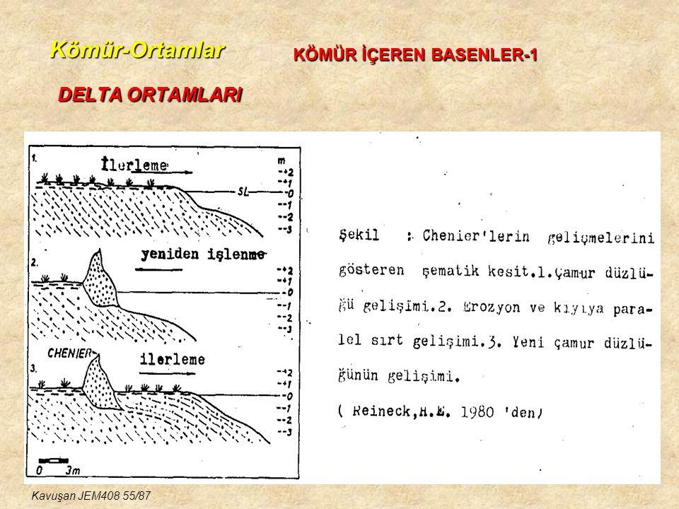 Kömür-Ortamlar DELTA ORTAMLARI KÖMÜR İÇEREN BASENLER-1