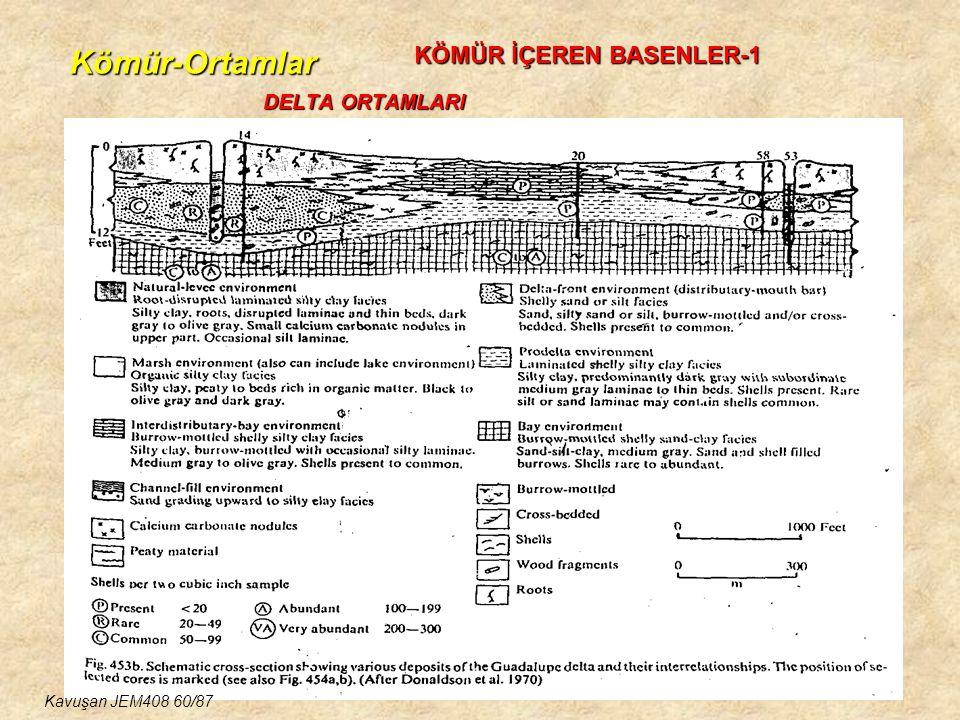 Kömür-Ortamlar KÖMÜR İÇEREN BASENLER-1 DELTA ORTAMLARI