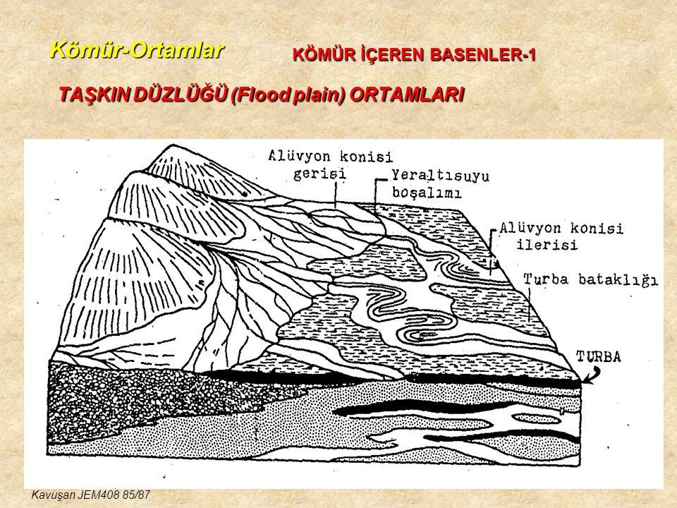 TAŞKIN DÜZLÜĞÜ (Flood plain) ORTAMLARI