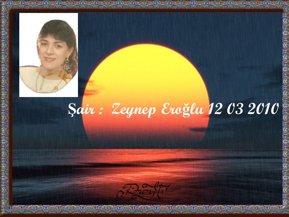 Şair : Zeynep Eroğlu 12 03 2010