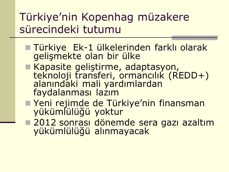 Türkiye'nin Kopenhag müzakere sürecindeki tutumu
