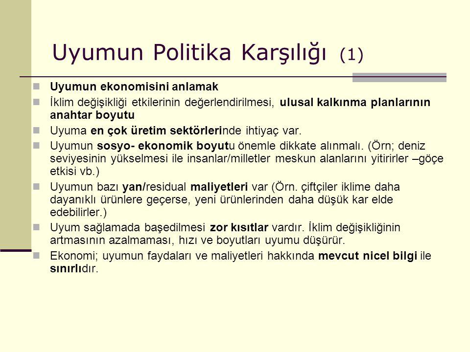 Uyumun Politika Karşılığı (1)