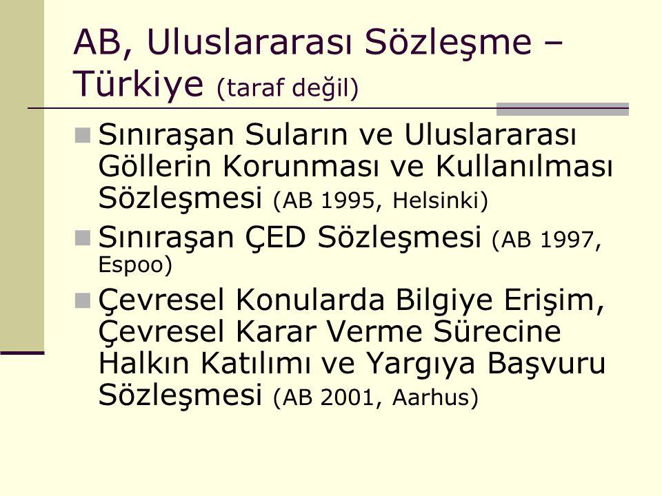AB, Uluslararası Sözleşme –Türkiye (taraf değil)