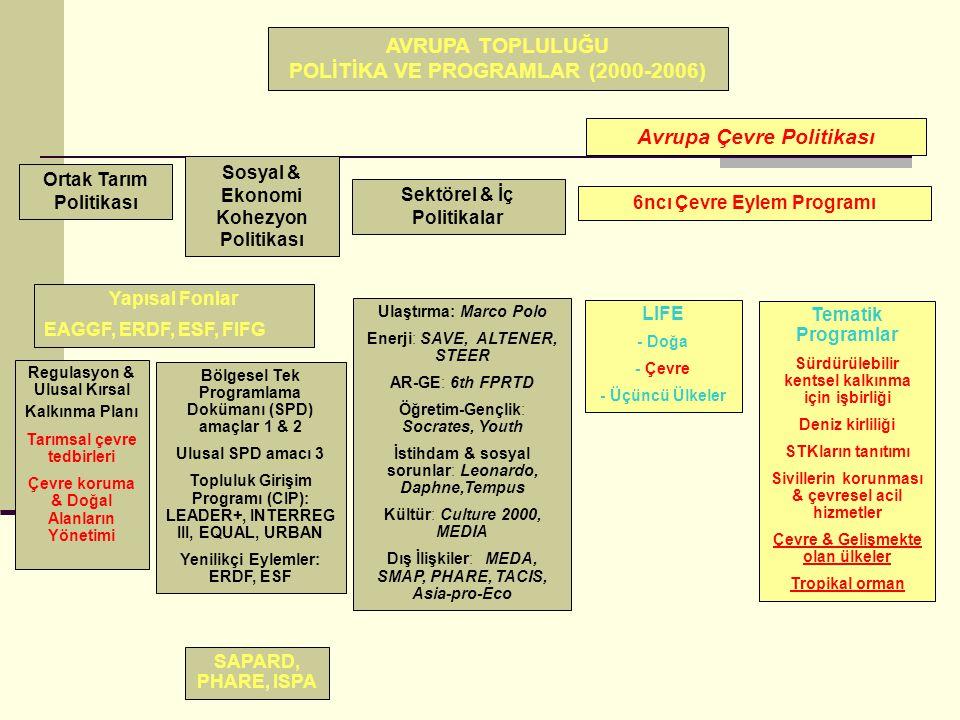 AVRUPA TOPLULUĞU POLİTİKA VE PROGRAMLAR (2000-2006)