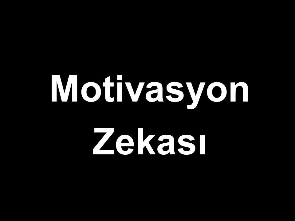 Motivasyon Zekası
