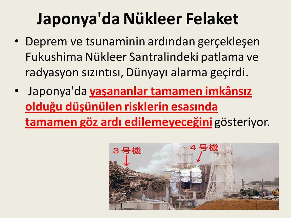 Japonya da Nükleer Felaket
