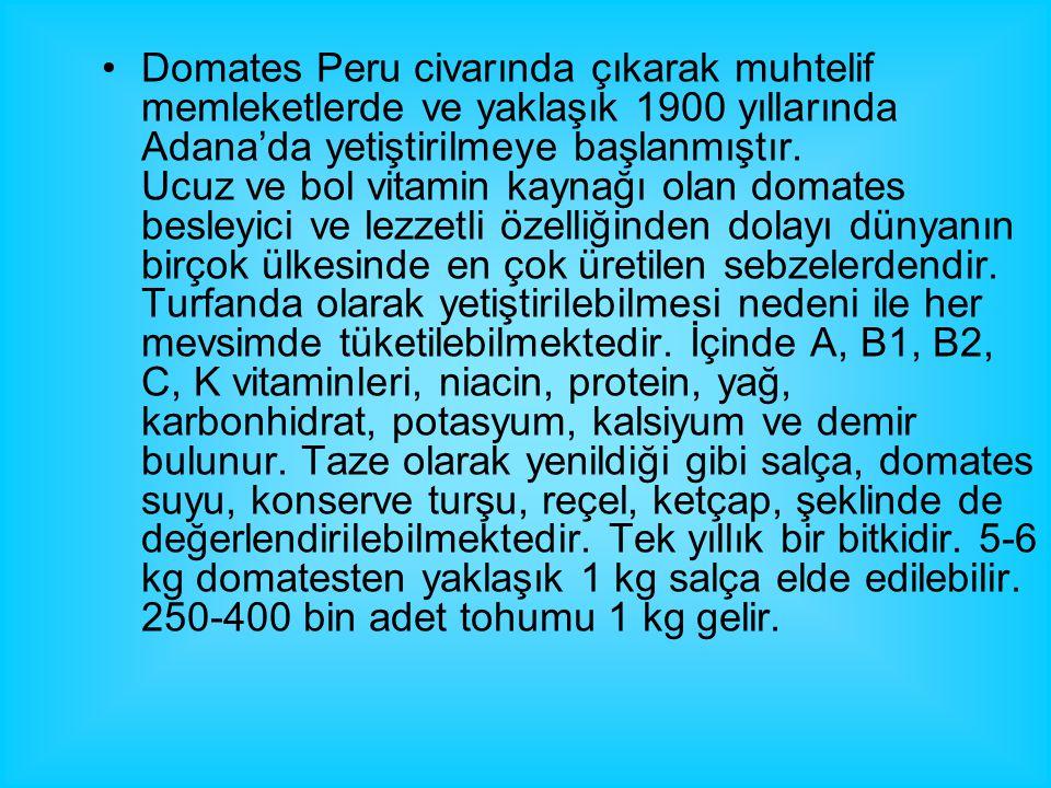 Domates Peru civarında çıkarak muhtelif memleketlerde ve yaklaşık 1900 yıllarında Adana'da yetiştirilmeye başlanmıştır.