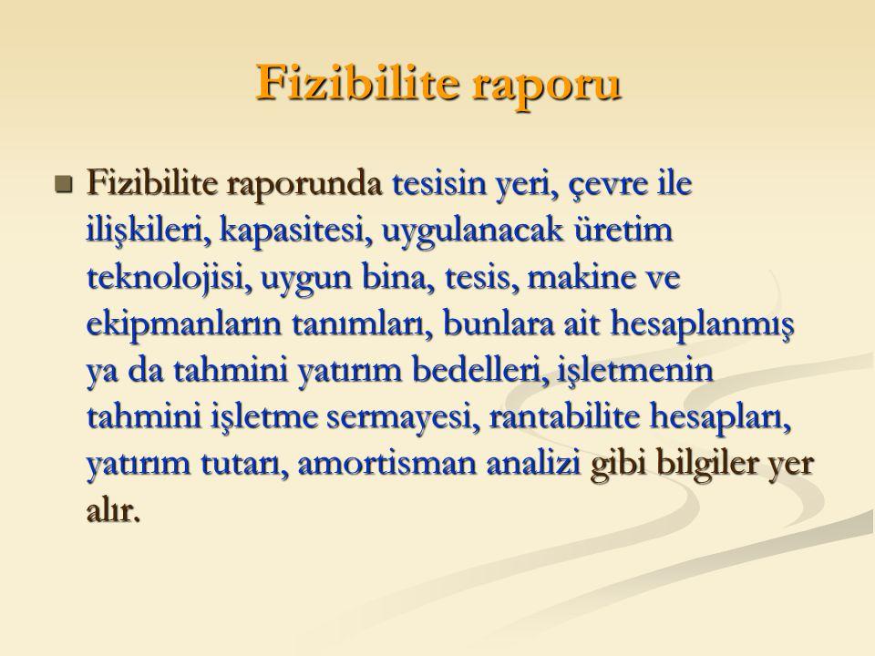 Fizibilite raporu