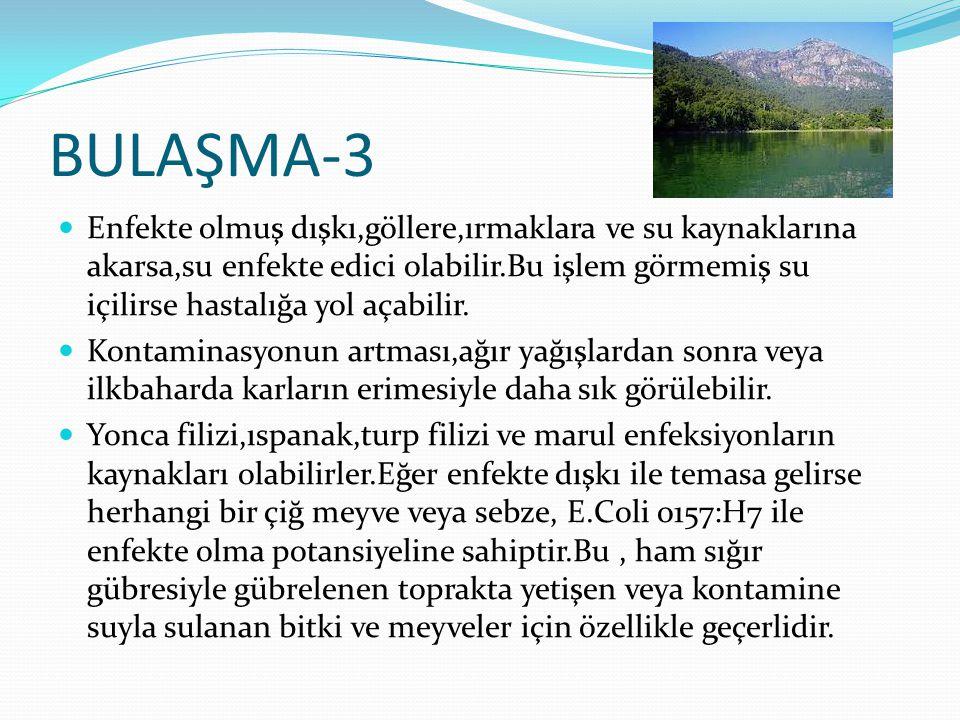 BULAŞMA-3