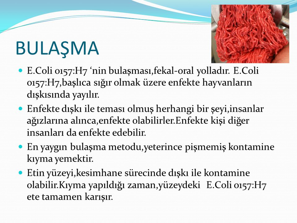 BULAŞMA E.Coli o157:H7 'nin bulaşması,fekal-oral yolladır. E.Coli o157:H7,başlıca sığır olmak üzere enfekte hayvanların dışkısında yayılır.