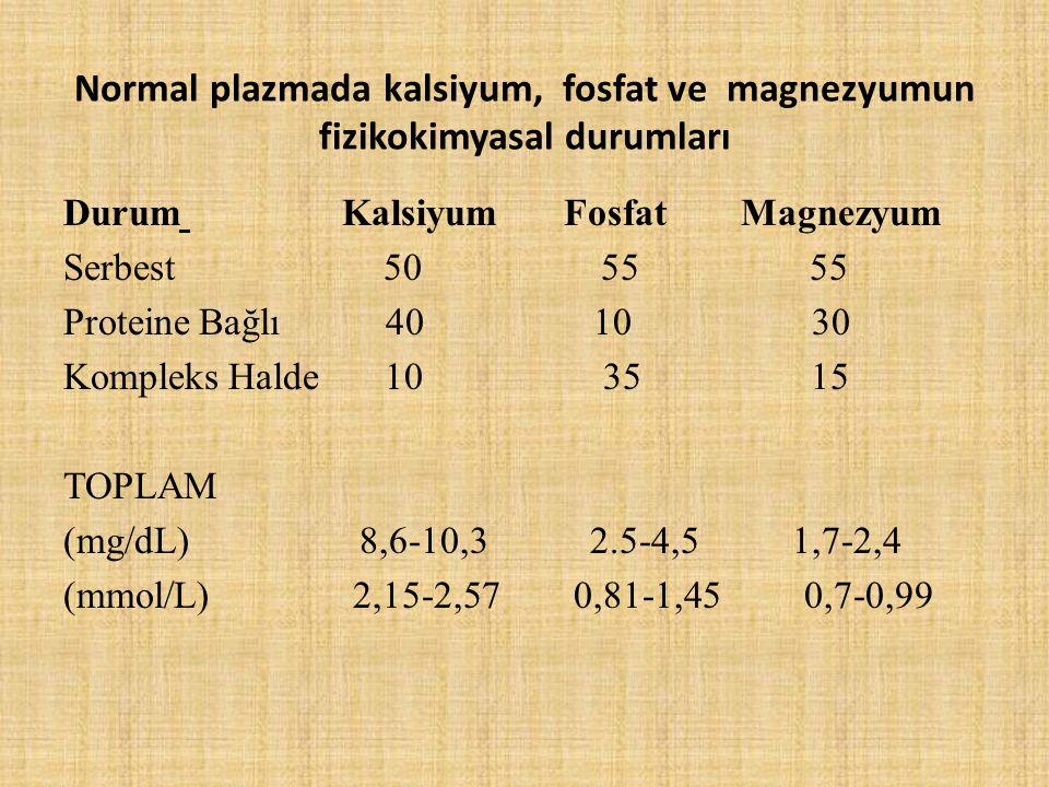 Normal plazmada kalsiyum, fosfat ve magnezyumun fizikokimyasal durumları